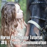 Horse Psychology Tutorial: Part 6 Trust and comunication