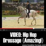 VIDEO: Hip Hop Dressage (Amazing!)
