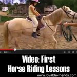 Video: First Horse Riding Lessons